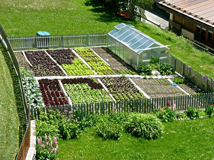 Fertilizzanti e pesticidi biologici fai da te per l 39 orto for Orto pensile fai da te